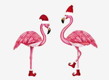 Free Winter Flamingo In Santa Hat And Shoes. Christmas Design For Cards, Backgrounds, Fabric, Wrapping Paper. Merry Christmas Stock Photo - 162521770