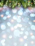 Winter flickering background. With fir branches. Vector illustration Royalty Free Stock Image