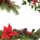 Winter Flora and Fauna Border. Christmas decorative border of poinsettia flower, holly, ivy, pine cones and spruce fir leaf sprig over white background Stock Image