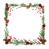 Winter Flora and Holly Berry Frame royalty free stock image