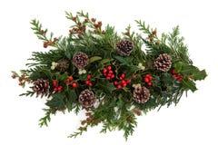 Winter-Flora und Fauna Stockbild