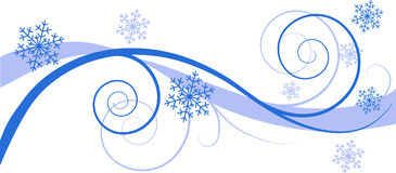 Winter floral background Stock Photography
