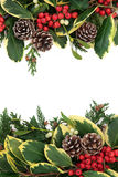 Winter Floral Border Stock Image