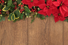 Winter Floral Border Stock Photos