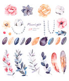 Winter floral collection with 29 watercolor elements. Beautiful winter collection with branches,cotton plants,flowers,strings of pearls,colorful leaves.Winter Stock Photography