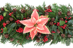 Winter Floral Decoration Stock Photos
