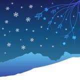 Winter floral design Stock Photos