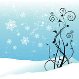 Winter floral design Royalty Free Stock Photos