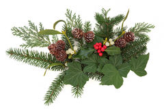 Winter Floral Display Stock Images