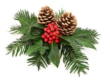 Winter Floral Display. Winter and christmas floral arrangement of holly with red berries, ivy, gold pine cones and  fir over white background Stock Photos