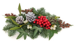 Winter Floral Display Royalty Free Stock Photography