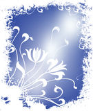 Winter floral illustration Royalty Free Stock Image