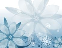 Winter Flowers Background Stock Photo