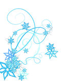 Winter flowers decoration. Blue winter flowers decoration on white Stock Images