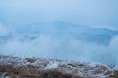 Winter fog Stock Photography