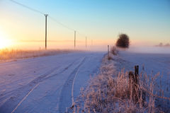 Winter fog Stock Photo
