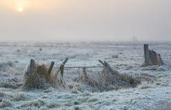 Winter fog Royalty Free Stock Image