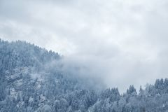 Winter fog over mountains Stock Images