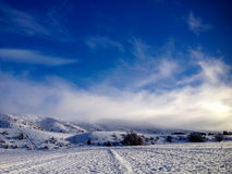 Winter Fog. A sunny light shining through winter fog over the snowy hill Stock Images