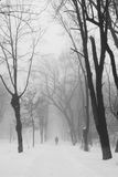 Winter foggy landscape in the park with people passing by Stock Photo