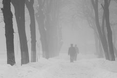 Winter foggy landscape in the park with people passing by Stock Image