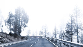 Winter Foggy Winding Road Royalty Free Stock Photography
