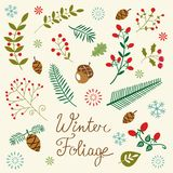 Winter foliage set Stock Photos