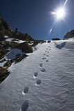 Winter footprints. Hiking in a suny day Stock Photography
