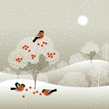 Winter forest stock illustration