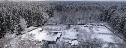 Winter forest. Panorama aerial view Royalty Free Stock Photos