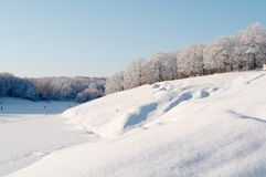 Winter forest. Trees in snow in winter, Russia royalty free stock photography