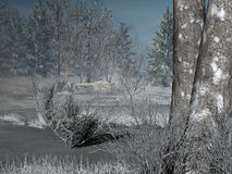 Winter forest. Render with frozen pond Royalty Free Stock Image