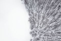 Winter forest from above. Aerial view forest and snow. Winter stock photo