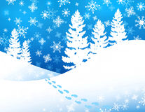 Winter Forest Background Royalty Free Stock Photography