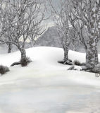 Winter forest background scene Stock Photography