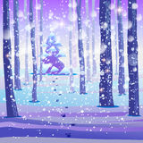 Winter Forest background Stock Image