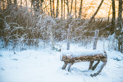 Winter forest and bench Stock Image