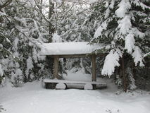 Winter forest bench Stock Images