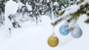 Winter Forest and Christmas Balls on the Fir-Tree stock video footage