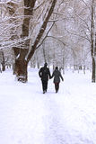 Winter forest couple Royalty Free Stock Photos