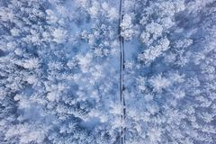 Winter forest covered in thick snow. Aerial landscape royalty free stock photography