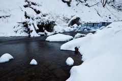 Winter forest creek Stock Images