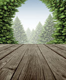 Winter Forest Deck Frame. Winter forest frame scene on old weathered wood patio deck with a view of a wintry forest of green pine trees on a cold day as a symbol Royalty Free Stock Photography
