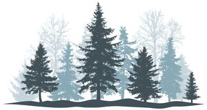 Winter forest evergreen pine, tree isolated. Park Christmas tree. Individual, separate objects. Vector illustration royalty free illustration