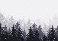 Winter night forest. falling snow in the air. christmas theme. new year weather. background royalty free stock photos