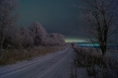 Winter forest frost winter road in the forest royalty free stock photo