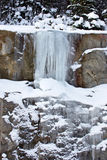 Winter forest and frozen waterfalls Royalty Free Stock Photography
