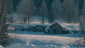 Winter forest in a hoarfrost. Snowfall. Small wooden house. stock footage