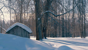 Winter forest in a hoarfrost. Snowfall. Small wooden house. Royalty Free Stock Photography