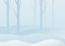 Winter forest landscape Stock Photos